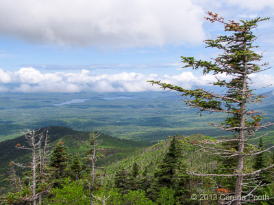 View from Whiteface Mountain, photo by Carena Pooth