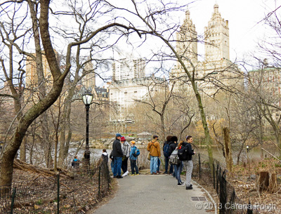 Central Park birding, photo by Carena Pooth