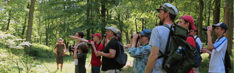 Birding at Doodletown, June 2013 - photo by Carena Pooth