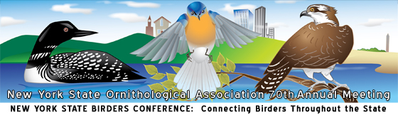 NYSOA Annual Meeting banner